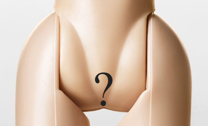 what-is-the-vulva